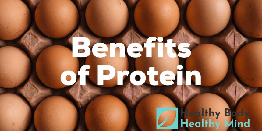 Importance of Protein in Diet – Health Benefits of Protein