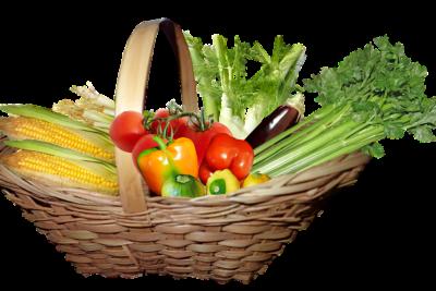 Important Health Benefits Of Celery